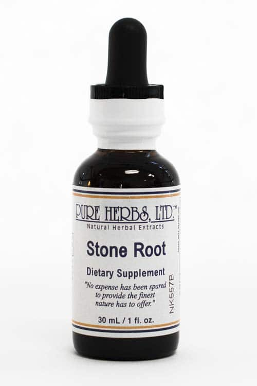 Stone Root Pure On Main